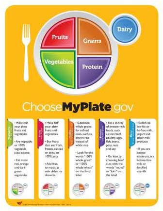 graphic relating to Myplate Printable known as Vitamins